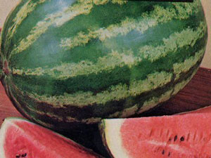 crisby watermelons